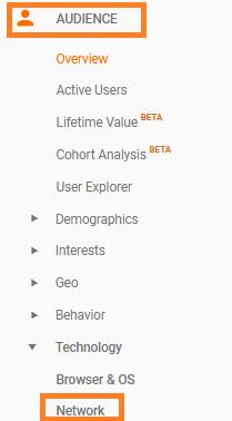 Company Names Report in Google Analytics
